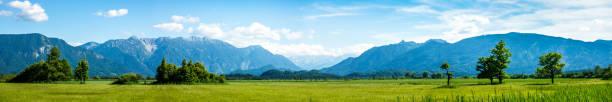 landscape murnauer moos - bavaria landscape murnauer moos - bavaria - germany bavarian alps stock pictures, royalty-free photos & images