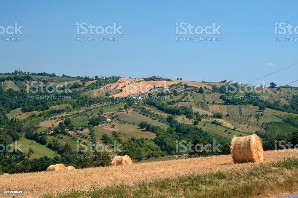 Landscape near Ascoli Piceno at summer stock photo