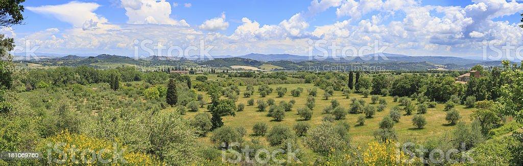 Landscape near Chiusi, Tuscany, Italy royalty-free stock photo