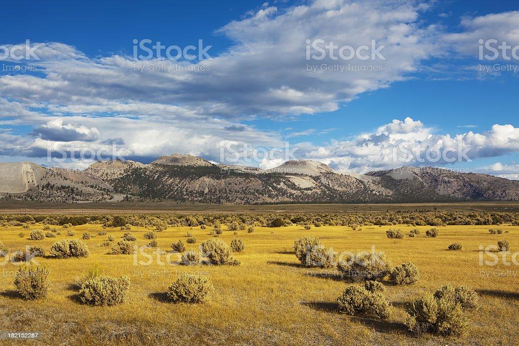Landscape near Mono Lake royalty-free stock photo
