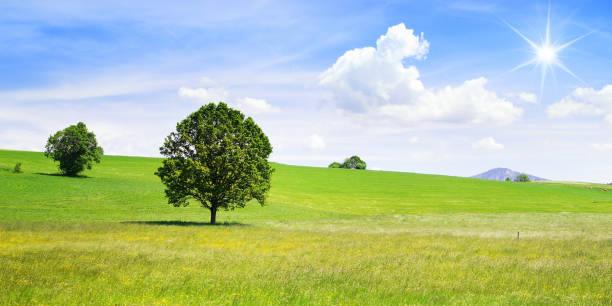 Landschaft bei Murnau in Oberbayern – Foto
