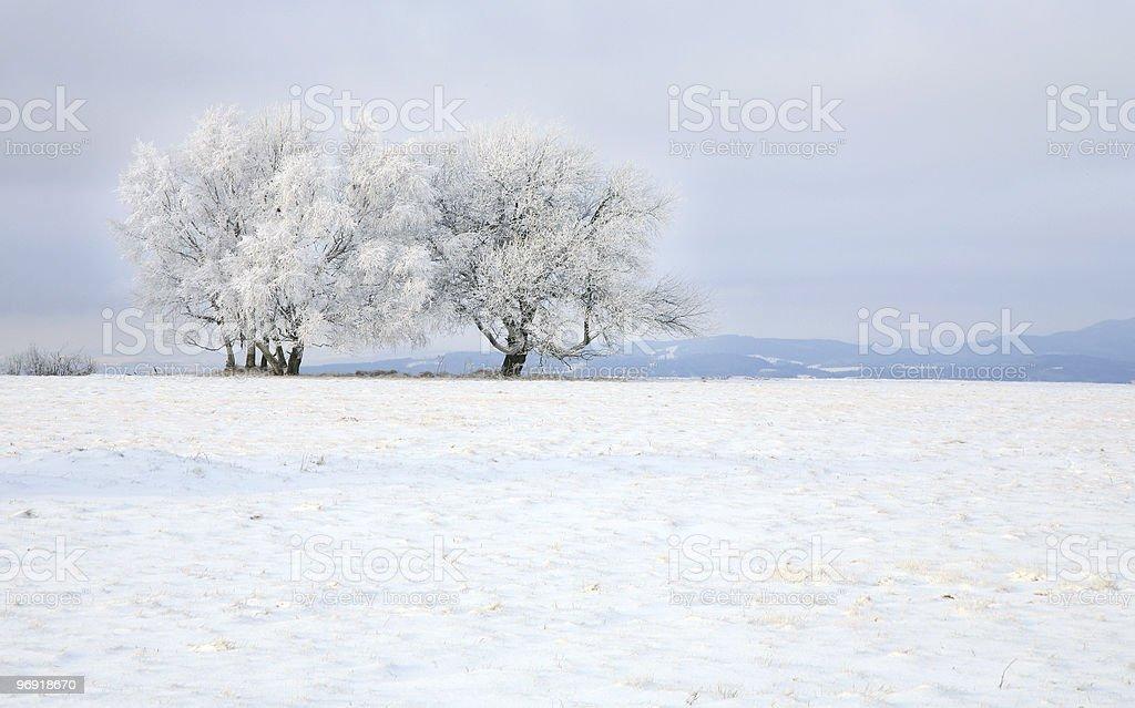 Landscape near Pasterka village in Poland royalty-free stock photo