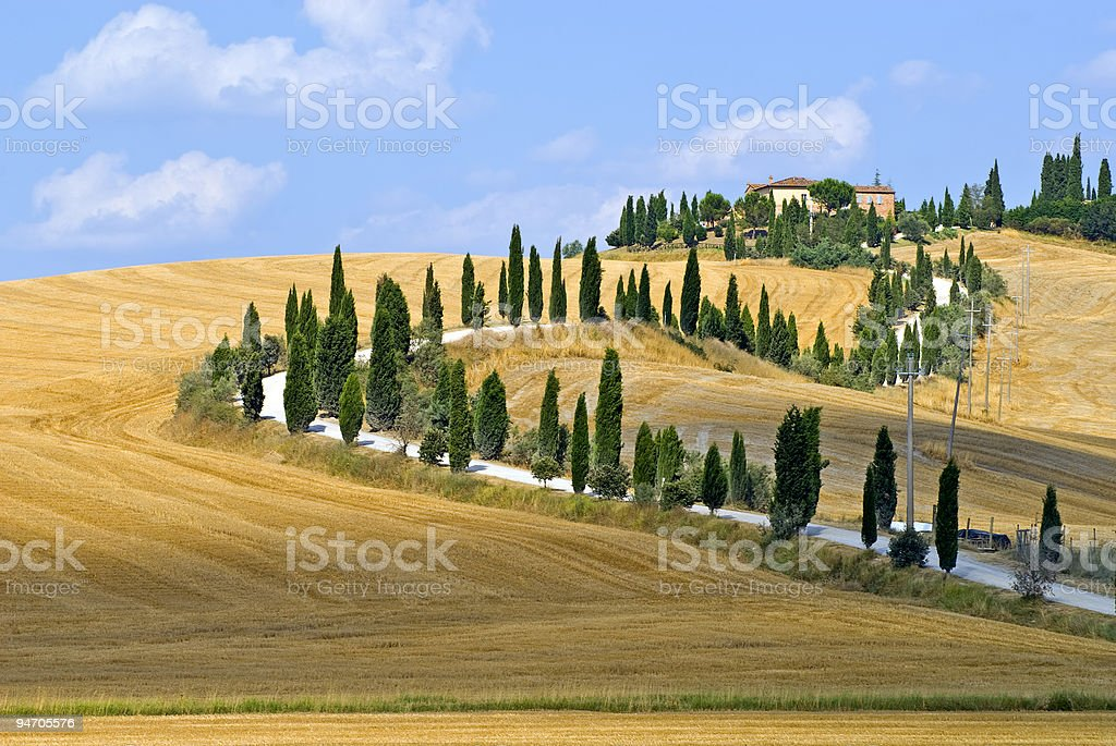 A landscape of a countryside with yellow fields stock photo