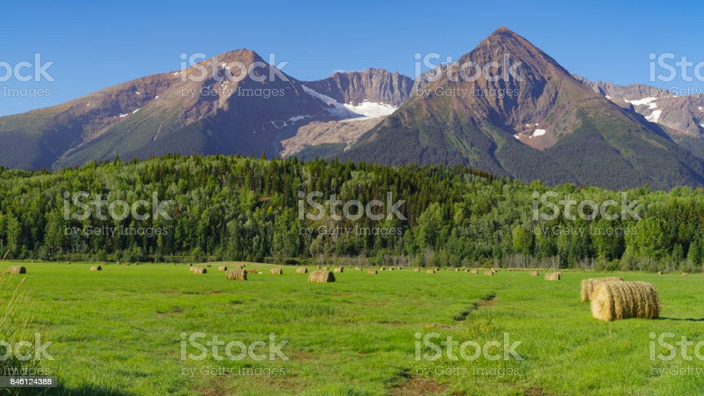 Landscape Of A Farm Field With Hay Bale Rolls And