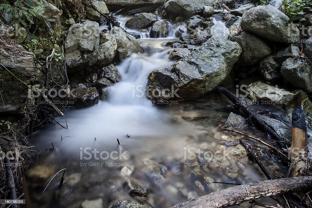 Landscape of a Stream in the Redwood Forest royalty-free stock photo
