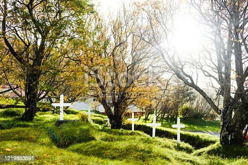 Landscape of abandoned cemetery with white crosses in ground. Sunny day/ Autumn trees around graves