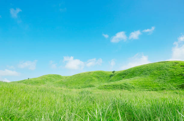 landscape of Aso area in Japan landscape of Aso area in Japan grass area stock pictures, royalty-free photos & images