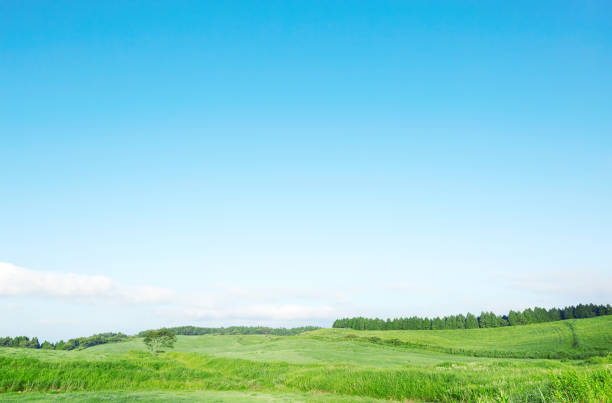 日本の阿蘇の風景 - sky ストックフォトと画像