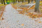 Landscape of autumn forest park