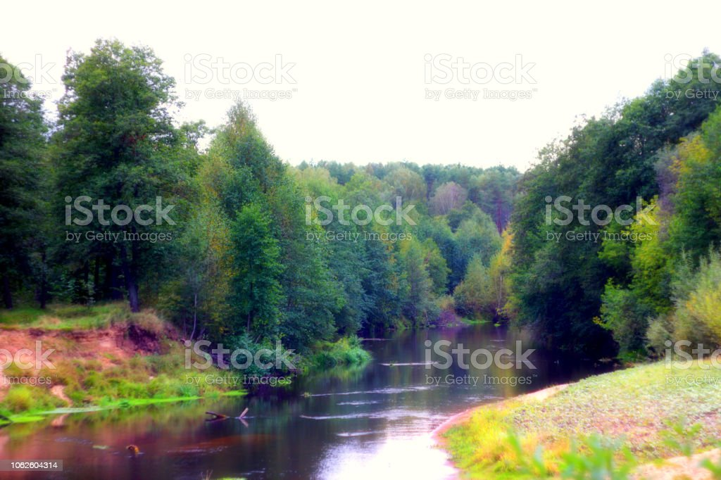 Landscape Of Beautiful Forest River In Early Autumn Time