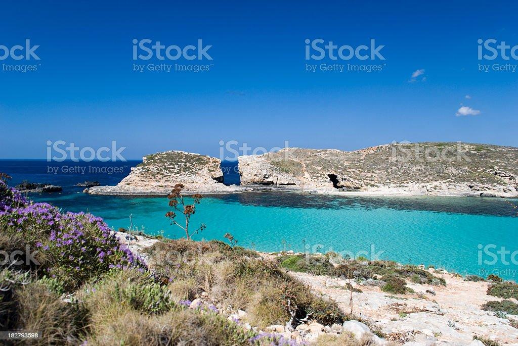 A landscape of blue lagoon in Malta stock photo