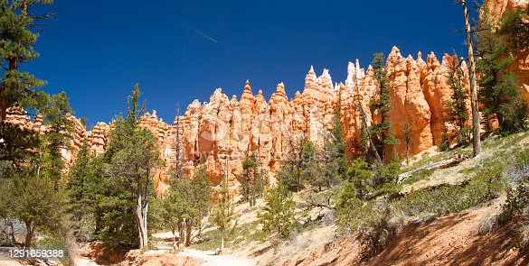 Landscape of Bryce Canyon National Park at in spring with blue sky and aircraft