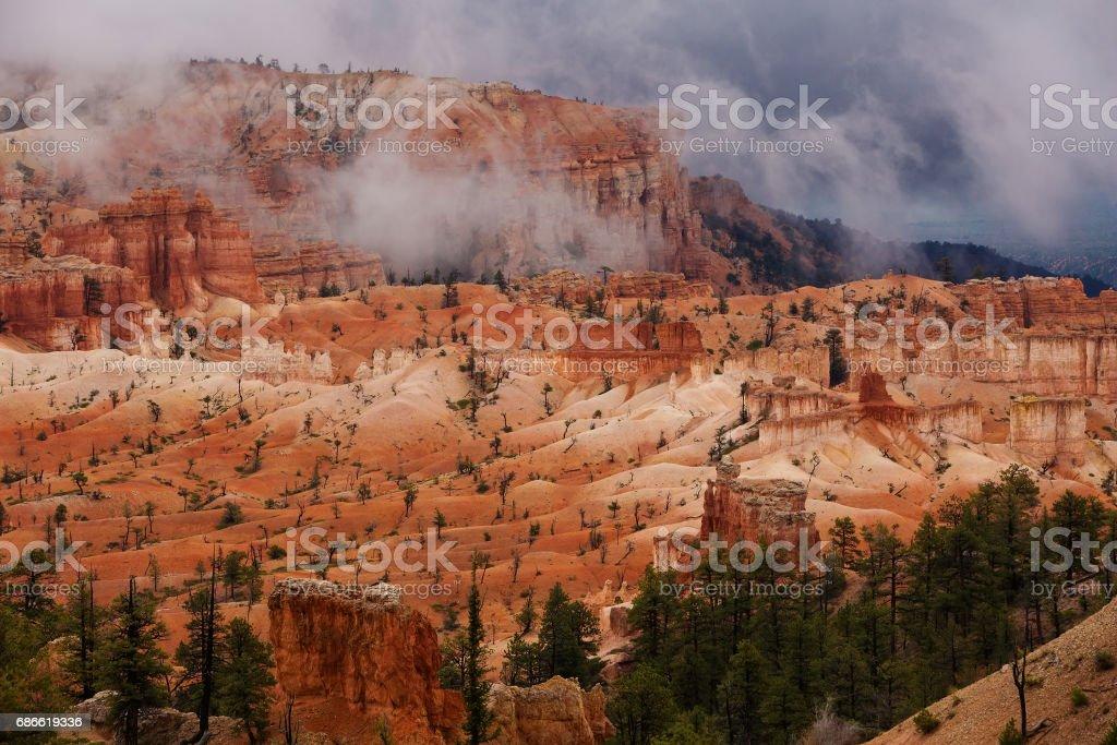 Landscape of Bryce canyon National Park, Utah, USA photo libre de droits