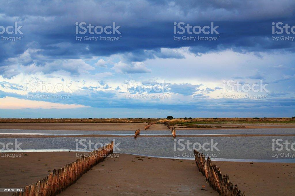Landschaft der Camargue, Frankreich – Foto