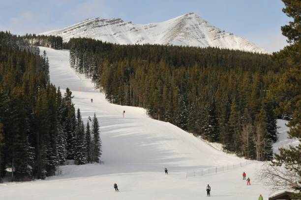 Landscape of Canadian famous skiing resort and slopes located in Canadian Rocky Mountain, Kananaskis country, Alberta near Calgary. Canadian Rocky mountains are famous for its Skiing slops, normally covered with fresh snow. A sunny day in winter. kananaskis country stock pictures, royalty-free photos & images
