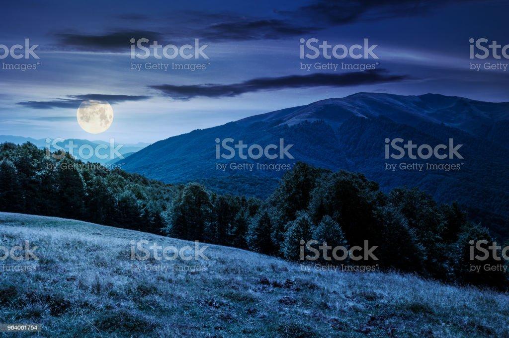 landscape of Carpathian mountains at night - Royalty-free Beauty Stock Photo