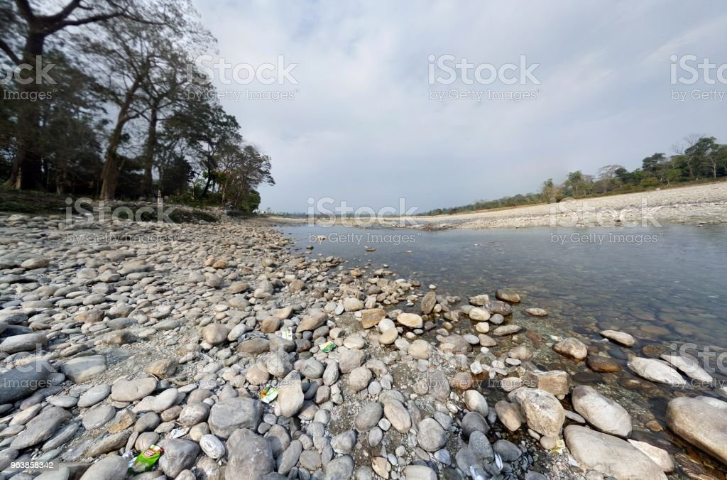 Landscape of Dooars - Royalty-free Dating Stock Photo