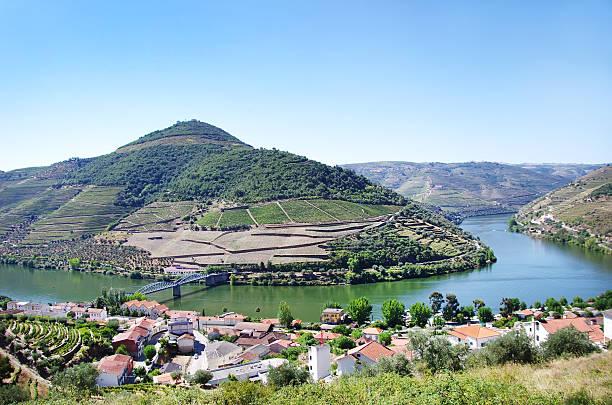 panorama das vinhas do douro, pinhão, portugal - douro imagens e fotografias de stock