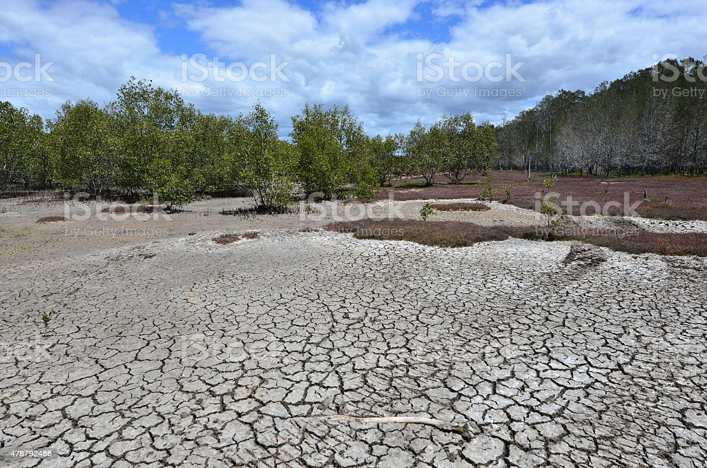 Landscape of dry earth stock photo