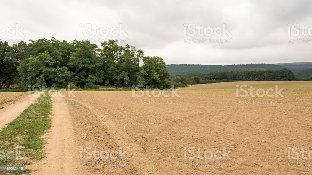Landscape of field after the harvest stock photo
