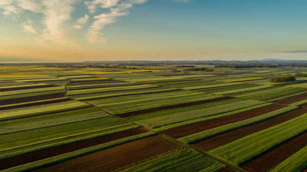 Landscape of fields at sunset, Aerial view stock photo