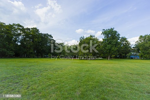istock landscape of grass field and green environment public park use as natural background,backdrop 1185682063