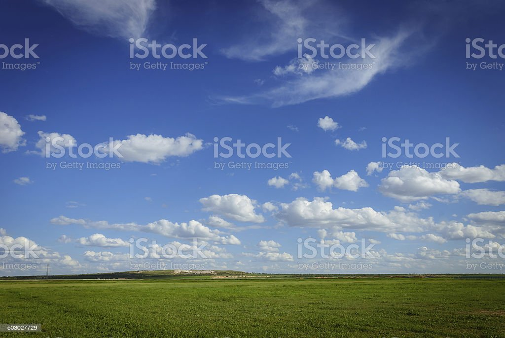 landscape of grassland royalty-free stock photo