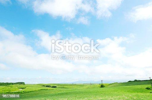 landscape of green field