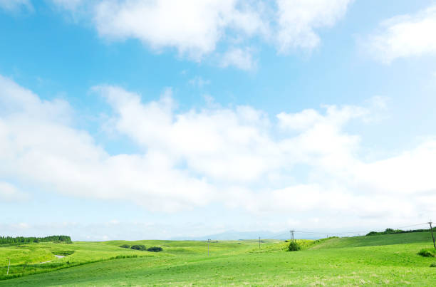 landscape of green field landscape of green field horizon over land stock pictures, royalty-free photos & images