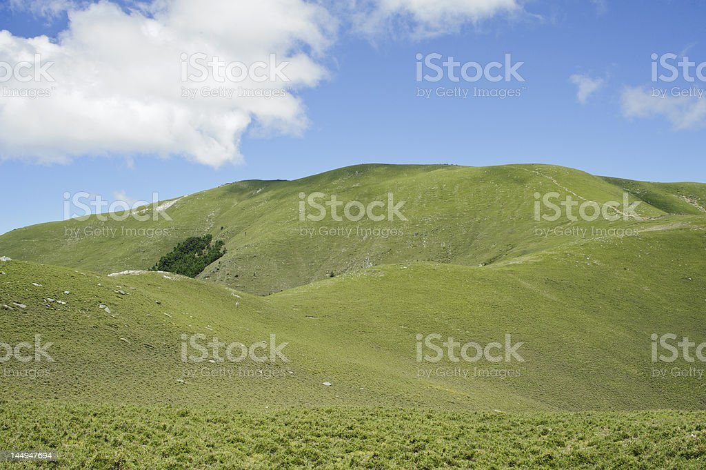 landscape of green mountain trail. royalty-free stock photo