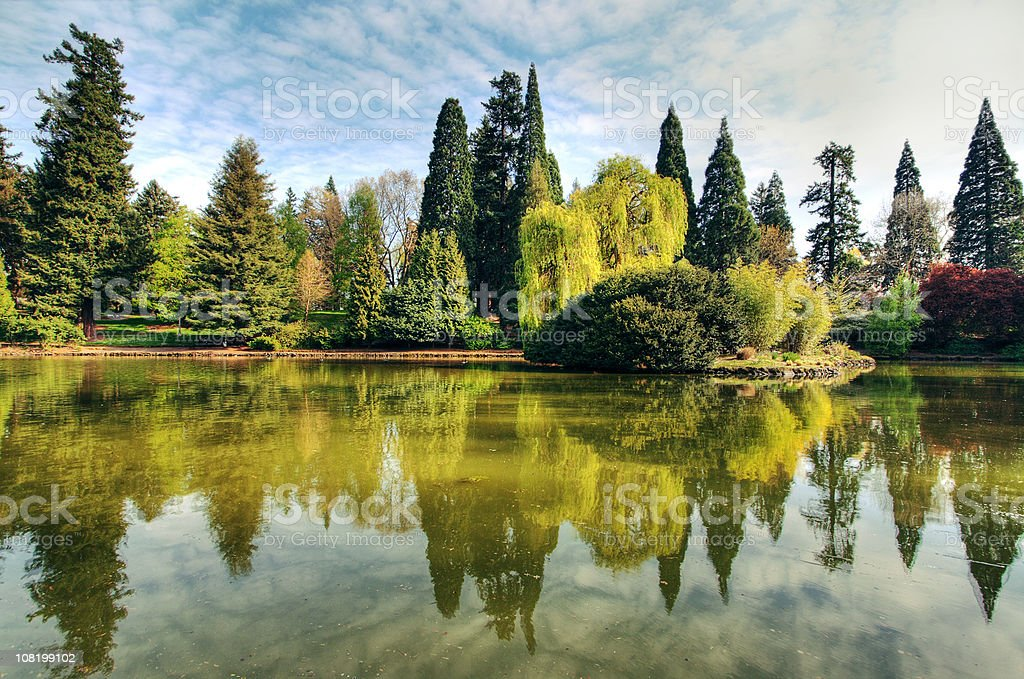 Landscape of Green Trees on Water Edge royalty-free stock photo