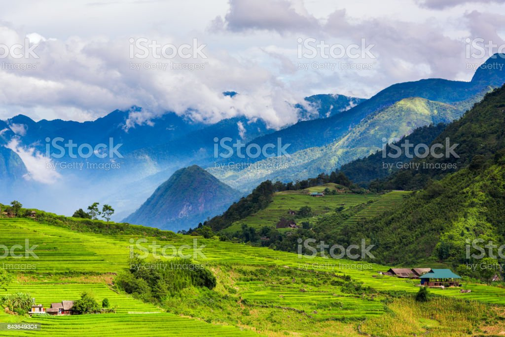 Landscape of green valley and layers of rice fields in Sapa, Vietnam stock photo