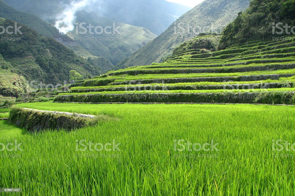 Landscape of Hapao rice terraces royalty-free stock photo