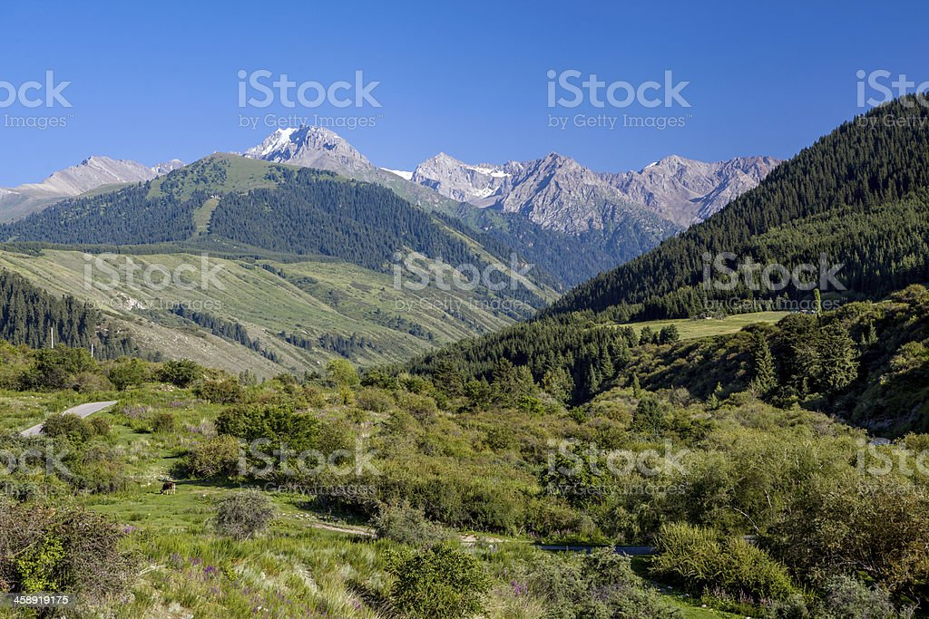 Landscape of high Tien Shan mountains stock photo