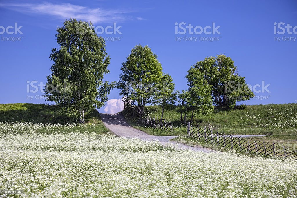Landscape of Kizhi island royalty-free stock photo