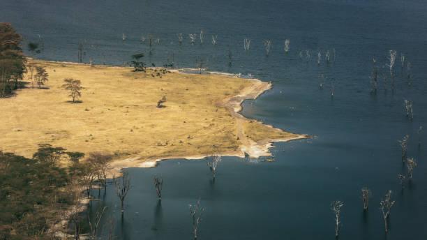 Paysage du lac Nakuru - Parc national Nakuru - Kenya - Photo
