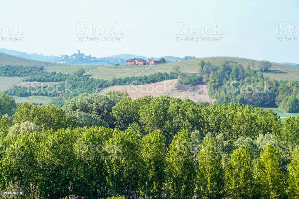 Landscape of Langhe stock photo