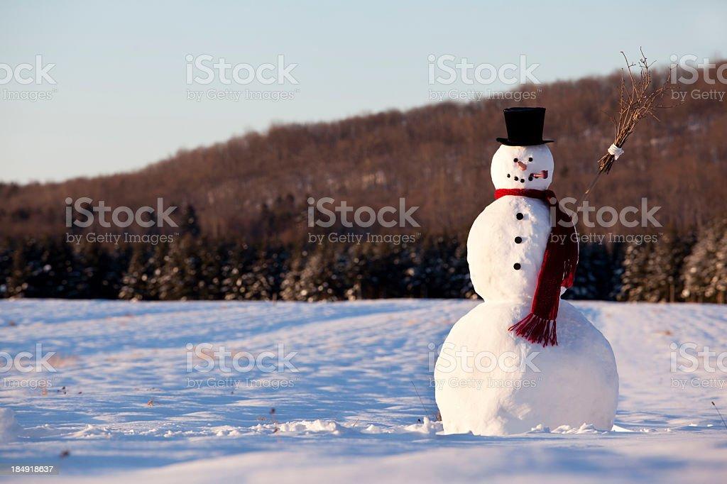 Boneco de neve pela manhã - foto de acervo