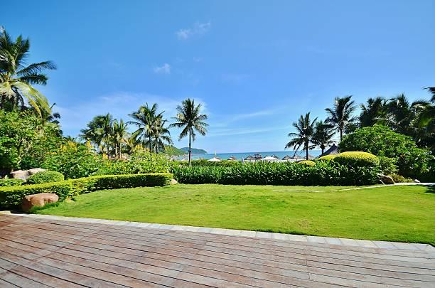 die gepflegten rasenflächen und sträucher im resort - palmengarten stock-fotos und bilder