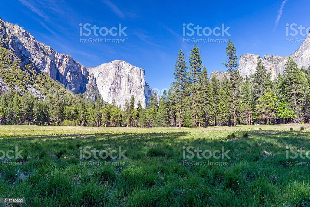 Landscape of meadow, forest and mountains in Yosemite NP stock photo