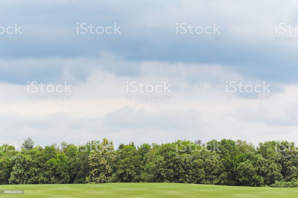 Landschap van weide groen grasveld - Royalty-free Berg Stockfoto