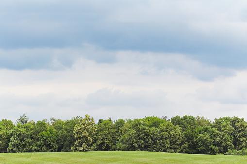 Landschap Van Weide Groen Grasveld Stockfoto en meer beelden van Berg