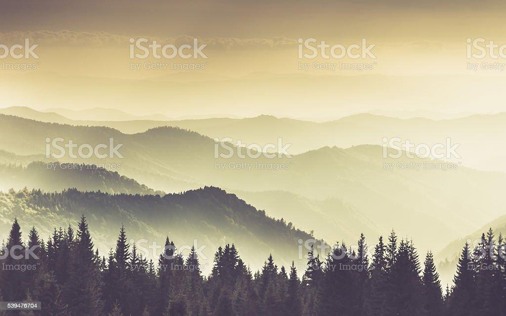 Landschaft von nebligen Berg im Wald hills. – Foto