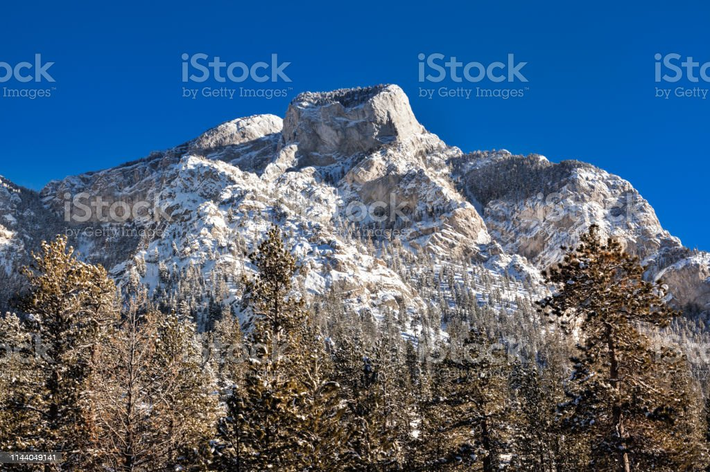 Landscape of mountain and pine trees in winter time, USA stock photo
