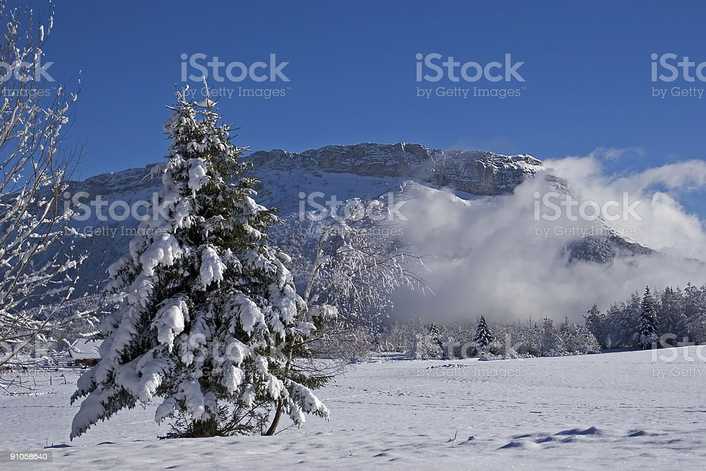 Landscape of mountain; royalty-free stock photo