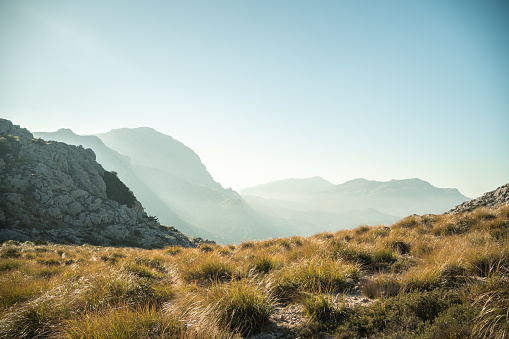 landscape of mountains and sunset with trees in the sierra de tramuntana spain mallorca