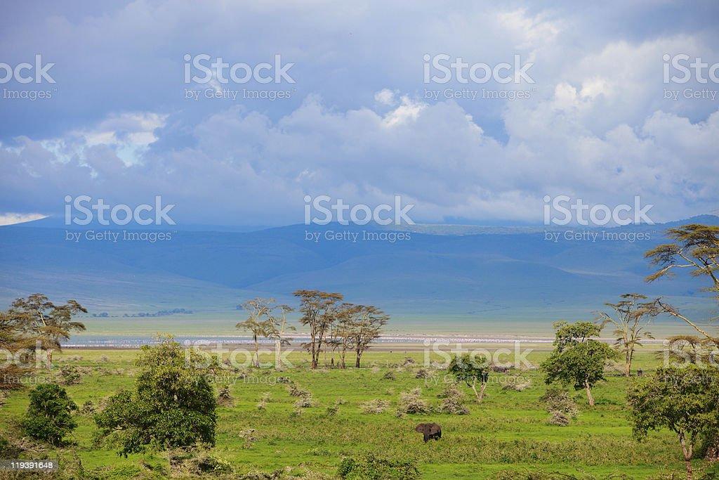 Landscape of Ngorongoro crater in Tanzania royalty-free stock photo