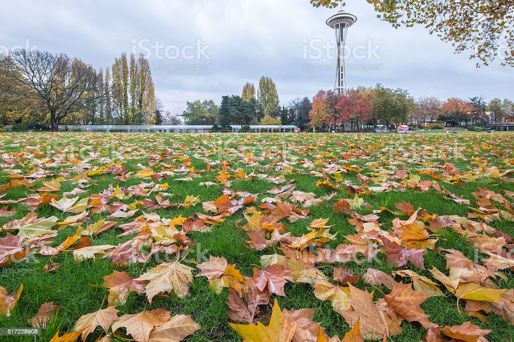 landscape of park near space needle in seattle stock photo