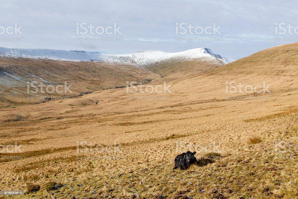 Landscape of Pen y Fan mountain with Winter Snow stock photo