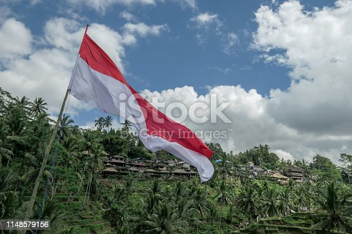 Landscape of rice fields of ubud and national flag